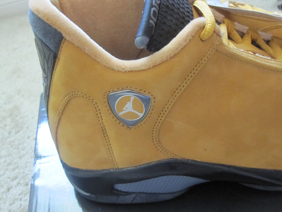 Air Jordan XIV: Chutney Sample