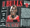 vintage-gear-michael-jordan-bulls-nutmeg-mills-t-shirt-07