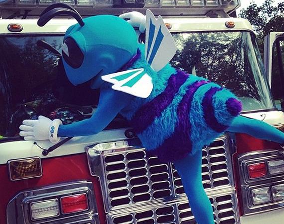 Charlotte Hornets Mascot Hugo Wears Air Jordan 11 Concord